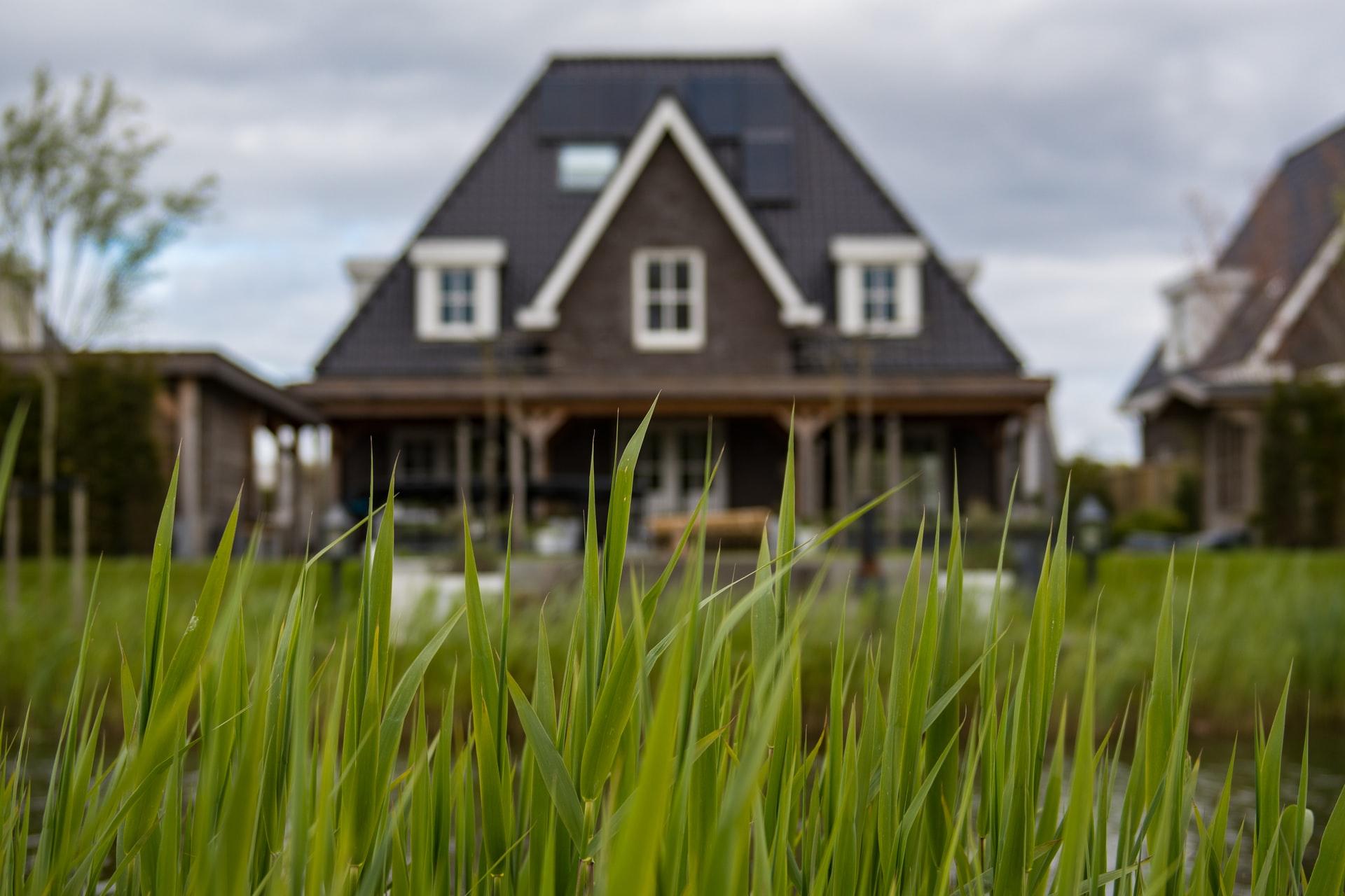 gras voor huis